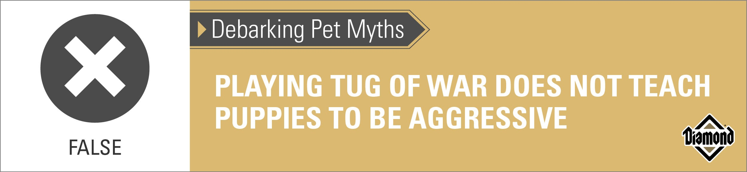False: Playing Tug of War Properly Does Not Teach Puppies to Be Aggressive | Diamond Pet Foods